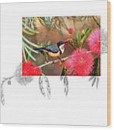 Eastern Spinebill Wood Print