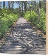 Easy Path Wood Print