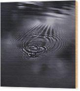 Echoes Wood Print by Akos Kozari