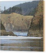 Ecola From Chapman Pt. Wood Print by Steven A Bash