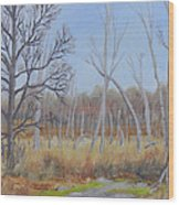 Edge Of The Marsh Wood Print