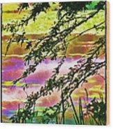 Edge Of The Pond Wood Print