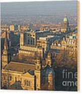 Edinburgh On A Winter's Day Wood Print by Christine Till