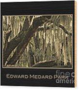 Edward Medard Park Wood Print