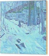 Eel Bay Trail Wood Print