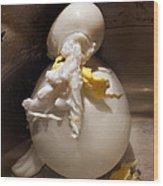Egg Man Wood Print