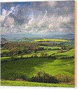 Eggardon Sheep Wood Print by Kris Dutson