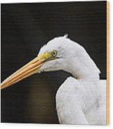 Egret - Old Whitey Wood Print