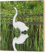 Egret 5 Wood Print