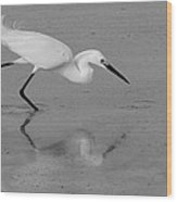 Egret In Black And White   Two Wood Print