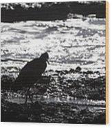 Egret Silhouette  Wood Print
