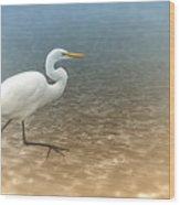 Egret Stroll Wood Print