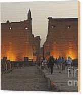 Egypt Luxor Temple Wood Print