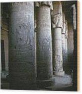 Egypt: Temple Of Hathor Wood Print