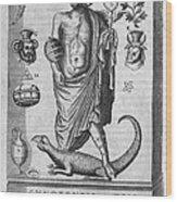 Egyptian God Anubis, 17th Century Wood Print