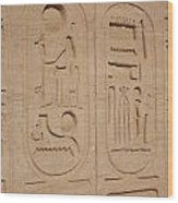 Egyptian Writing Wood Print