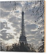 Eiffel In The Morning Wood Print