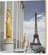 Eiffel Tower From Trocadero Wood Print by Elena Elisseeva