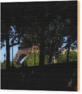 Eiffel Tower Shadows Wood Print