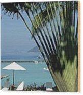 El Nido Vacation Wood Print by Tia Anderson-Esguerra