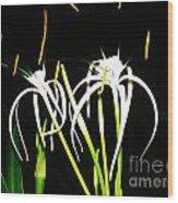 Elaines Flowers Wood Print
