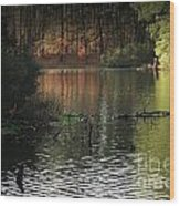 Elder Lake Wood Print