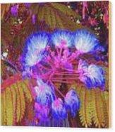 Electric Mimosa Wood Print by Juliana  Blessington