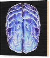 Electrical Activity In The Brain Wood Print