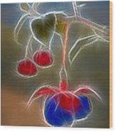 Electrifying Fuchsia Wood Print