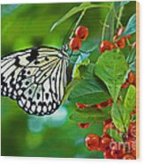 Elegant Rice Paper Butterfly On Berry Tree Wood Print