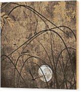Element Wood Print by Lourry Legarde