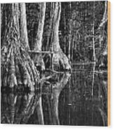 Elephant Feet Wood Print