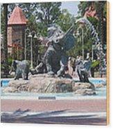 Elephant Fountain Wood Print