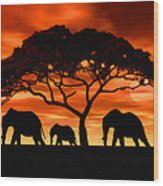 Elephant Sun Set Wood Print