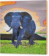 Elephantidae Diurnal Wood Print