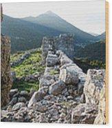 Eleutherae Walls Wood Print