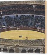 Elevated View Of Bullring Wood Print by Axiom Photographic