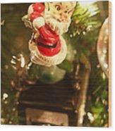 Elf On A Camera Wood Print by Toni Hopper