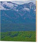 Elk Mountains Panorama Wood Print