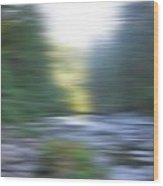Elkhorn Abstract Wood Print