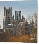 Ely Cathedral Scenic Wood Print