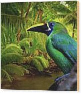 Emerald And Blue Toucan  Wood Print