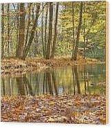 Emerald Creek 2 Wood Print