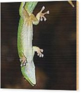 Emerald Gecko Wood Print