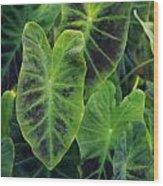 Emerald Leaves Wood Print
