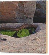 Emerald Pool Wood Print
