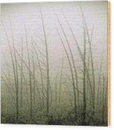 Emerson Bog At Dawn Wood Print