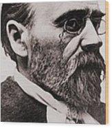 Emile Zola 1840-1902, French Novelist Wood Print