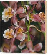 Emma's Orchid Wood Print