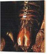 Emperor Scorpion 3.0 Wood Print